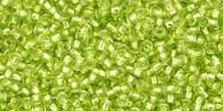 TR15 #24 зеленый лайм серебряная внутренняя линия