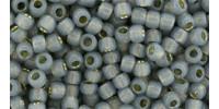 TR08 #2115 молочный серый серебряная внутренняя линия
