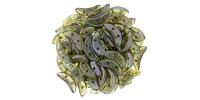 391-310-65431 CzechMates Crescent 3/10mm Olivine (Прозрачный оливин), 5гр.