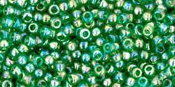 TR11 #167B: прозрачный радужный   зелёная трава