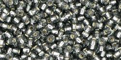TR11 #29B серый серебряная внутренняя линия