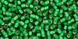 TR11 #27BF матовый зеленая трава серебряная внутренняя линия