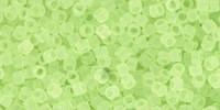 TT01 #15F прозрачно-матовый цитрусовые брызги