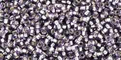 TR15 #39 танзанит серебряная внутренняя линия