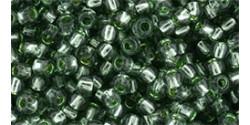 TR11 #2202 зелёный сельдерей серебряная внутренняя линия