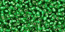 TR11 #27B зеленая трава серебряная внутренняя линия