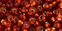 TM03 #2208 жжено-оранжевый серебряная внутренняя линия (Артикул снят с производства!)