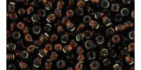 TR08 #2205 тёмное пиво серебряная внутренняя линия (Артикул снят с производства!)