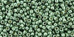 TR11 #PF589 стойкая отделка гальванизированный зелёная яшма