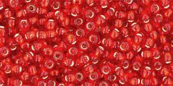TR11 #25B сиамский рубин серебряная внутренняя линия