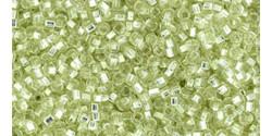 TR11 #24L светлый зеленый лайм серебряная внутренняя линия