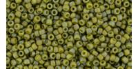 TR15 #2631F непрозрачный радужный матовый запылённый оливковый