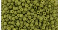 TR11 #2601F непрозрачный матовый запылённый оливковый