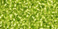 TR11 #24 зеленый лайм серебряная внутренняя линия