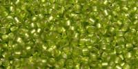 TR15 #24F матовый зеленый лайм серебряная внутренняя линия