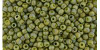 TR11 #2631F непрозрачный матовый радужный запылённый оливковый